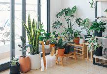 Jak usunąć przykre zapachy z pomieszczenia